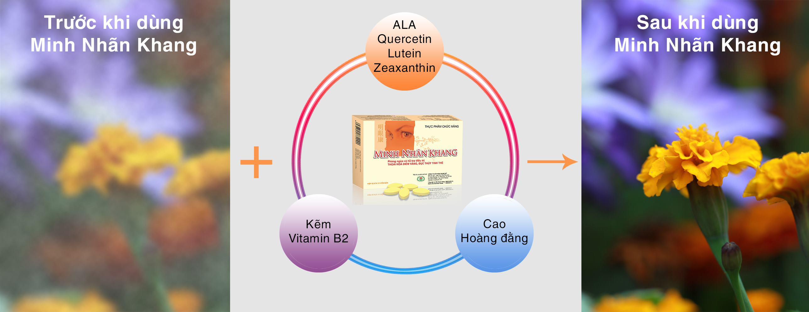 Minh Nhãn Khang - Giải pháp bảo vệ thị lực, ngăn chặn mắt mờ nhòe